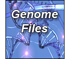 Search Genome File